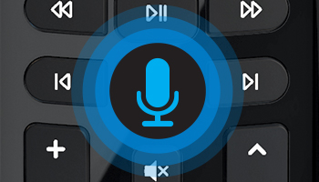 Voice Activated Remote